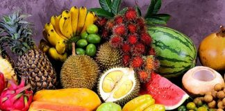 Mac frut expozitie