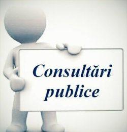 consultări publice