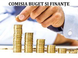 Buget si finante