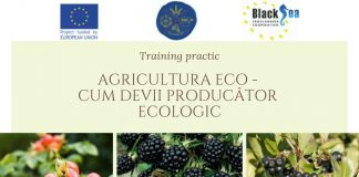 Training_AgriEco